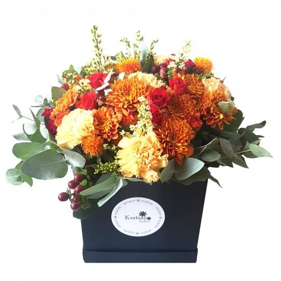 Květinový box Chryzantéma