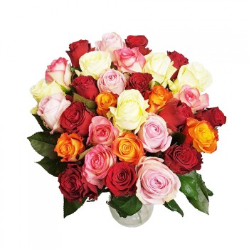 Bouquet of colorful roses 25pcs mix