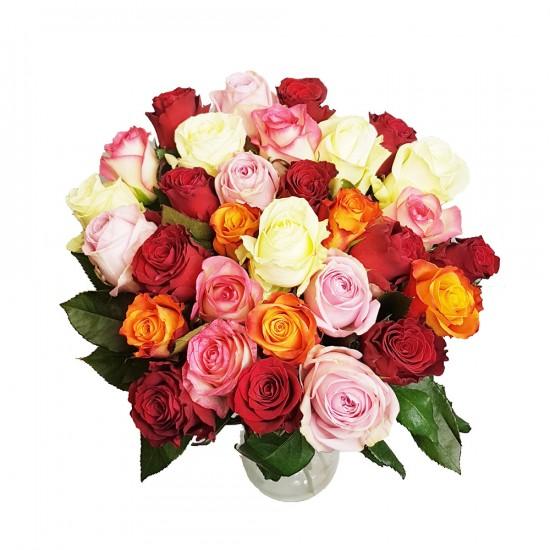 Barevný mix růží