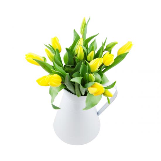 Tulipány v konvičce