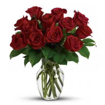 Červené růže Red Naomi