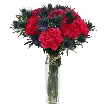 Carnation and eryngium