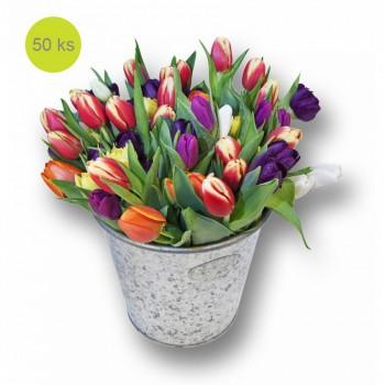 Mix Tulipány