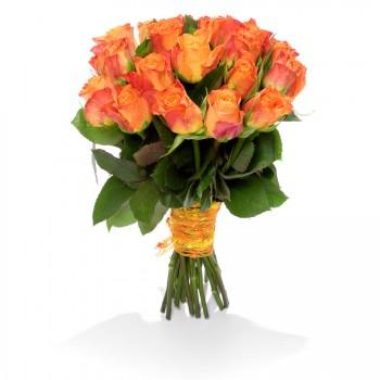 Ohnivá růže