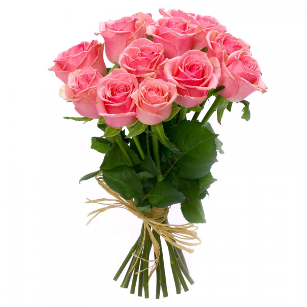 Svátek: Růže Romantika, Romantická Barva Růže Ve Vás Probouzí
