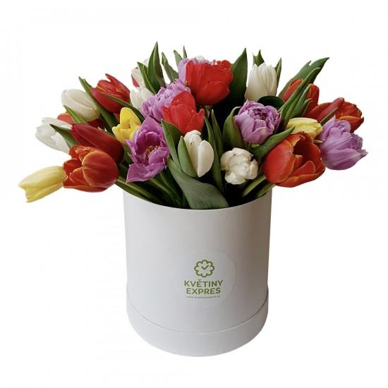 Bílý Tulipánový box